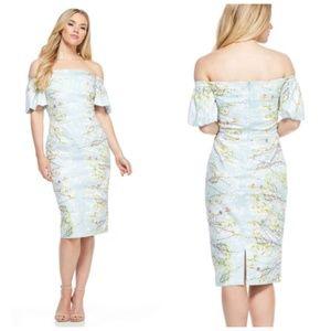 Maggy London Florencia Aqua Floral Midi Dress 14